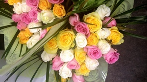 Preview wallpaper beautifully, bouquets, colorful, flowers, packaging, roses