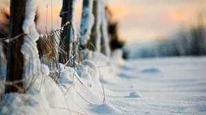 Preview wallpaper blades, fence, protection, snow