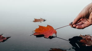 Preview wallpaper autumn, dry, hand, leaf, water