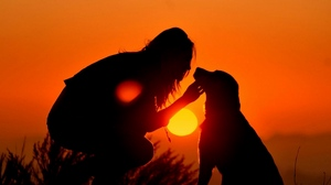 Preview wallpaper dog, girl, light, shadow, silhouette