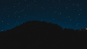 Preview wallpaper night, shine, sky, starry sky, stars, trees