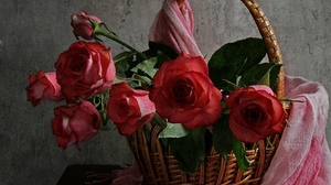 Preview wallpaper flowers, leaves, roses, table, tippet, trash, wall