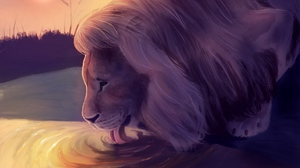 Preview wallpaper art, lion, protruding tongue, water, wildlife