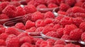 Preview wallpaper berry, bowl, raspberry, ripe