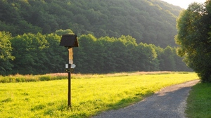 Preview wallpaper grass, meadow, road, sign, trees