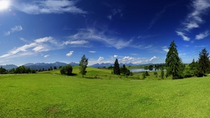 Preview wallpaper green, heat, meadow, plain, sky, solarly, summer, trees