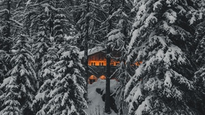 Preview wallpaper forest, house, nature, snow, trees