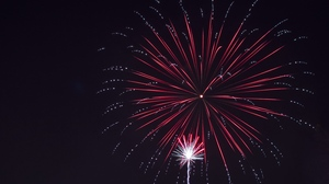 Preview wallpaper fireworks, holiday, night, salute, sky