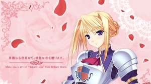 Preview wallpaper armor, blond, girl, princess lover, weapons