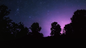 Preview wallpaper landscape, night, starry sky, stars, trees