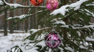 Preview wallpaper balls, branch, forest, holiday, new year, snow, tree