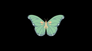 Preview wallpaper art, butterfly, minimalism, vector