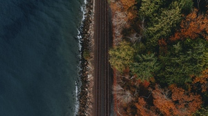 Preview wallpaper aerial view, coast, forest, railway, water