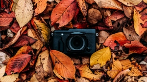 Preview wallpaper autumn, camera, foliage, leaves