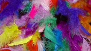 Preview wallpaper background, colorful, feathers