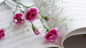 Preview wallpaper carnations, gypsophila, music, sheet music