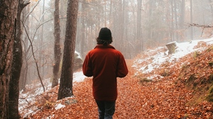 Preview wallpaper alone, fog, forest, man, walk