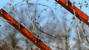Preview wallpaper barbed wire, metal, paint, rust, sky, stretched