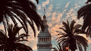 Preview wallpaper architecture, building, palm trees, tower