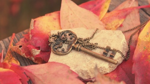 Preview wallpaper autumn, board, chain, key, leaves, metal, red, stone