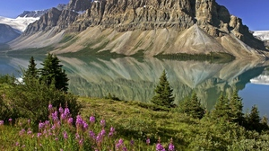 Preview wallpaper canada, flowers, lake, mirror, mountains, reflection