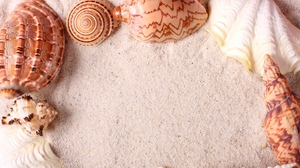 Preview wallpaper frame, sand, seashells