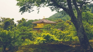 Preview wallpaper building, nature, pagoda, temple, trees