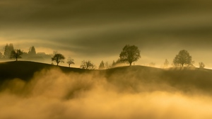 Preview wallpaper fog, hills, mountains, nature, trees