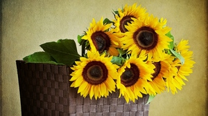 Preview wallpaper leaves, shopping, sunflowers, table, wall