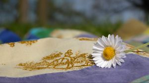 Preview wallpaper daisy, fabric, flower, nature