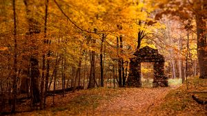 Preview wallpaper aperture, autumn, leaves, stones, trees, wall, wood