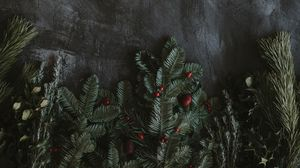Preview wallpaper berries, branches, grunge, spruce, texture