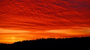 Preview wallpaper bright, clouds, fiery, forest, sunset, twilight