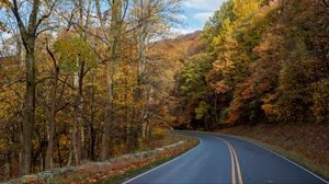 Preview wallpaper autumn, nature, road, trees, turn