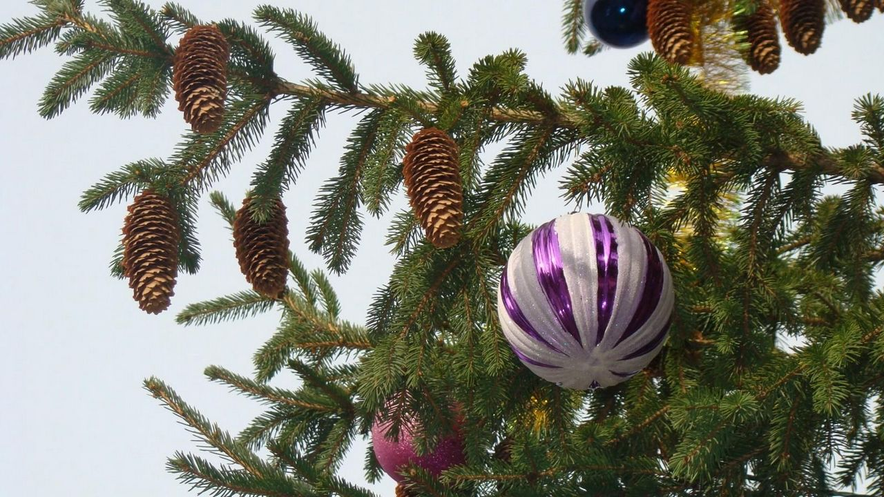 toys christmas tree twigs needles new year cones